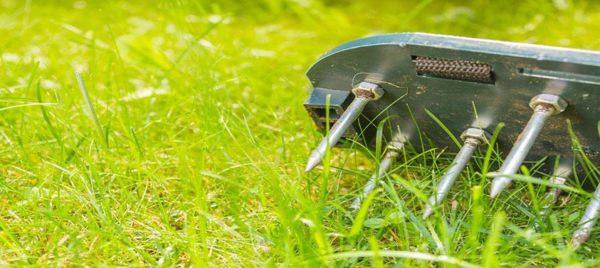 lawn-aerator