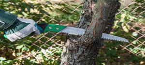 pruning-saw