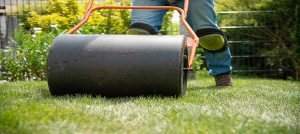 garden-roller