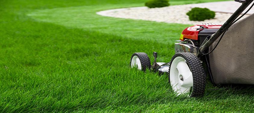 flymo-lawnmower
