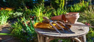 gardening-fork